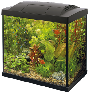 Superfish Start 30 Tropical kit zwart
