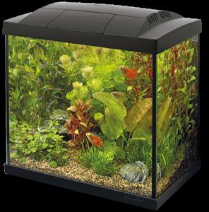 Superfish Start 50 Tropical kit zwart