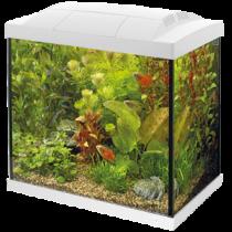 Superfish Start 30 Tropical kit wit