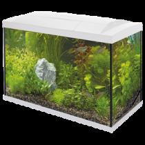 Superfish Start 70 Tropical kit wit