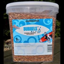 Bubbels Gammarus 5 liter