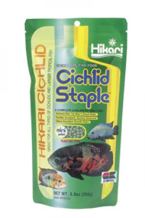Hikari Cichlid Staple, mini pellet 250 gram